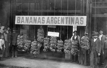 bananas-de-exportacion
